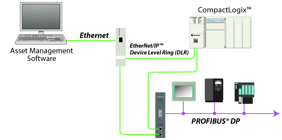 PLX51-PBM architecture