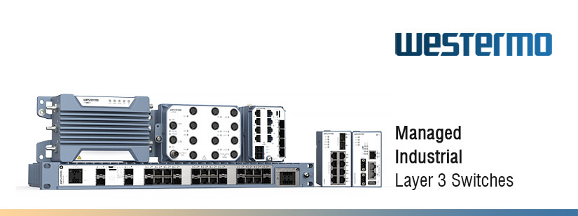 Managed Layer 3 Switches